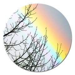 Rainbow Sky Spectrum Rainbow Colors Magnet 5  (round) by Amaryn4rt