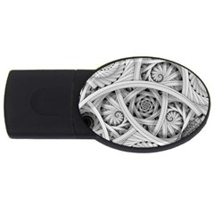 Fractal Wallpaper Black N White Chaos Usb Flash Drive Oval (4 Gb)