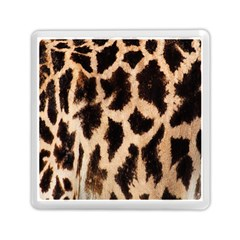 Yellow And Brown Spots On Giraffe Skin Texture Memory Card Reader (square)  by Amaryn4rt