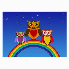 Owls Rainbow Animals Birds Nature Large Glasses Cloth by Amaryn4rt