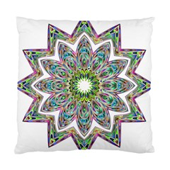 Decorative Ornamental Design Standard Cushion Case (two Sides) by Amaryn4rt