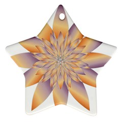 Chromatic Flower Gold Star Floral Star Ornament (two Sides)