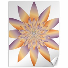 Chromatic Flower Gold Star Floral Canvas 18  X 24   by Alisyart