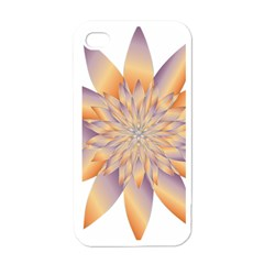 Chromatic Flower Gold Star Floral Apple Iphone 4 Case (white)