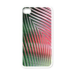 Watermelon Dream Apple Iphone 4 Case (white) by Simbadda