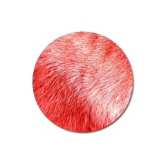Pink Fur Background Magnet 3  (round) by Simbadda