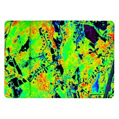 Bow Canopy Height Satelite Map Samsung Galaxy Tab 10 1  P7500 Flip Case
