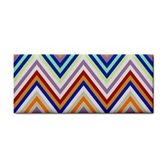 Chevron Wave Color Rainbow Triangle Waves Grey Cosmetic Storage Cases