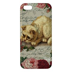 Vintage Kitten  Apple Iphone 5 Premium Hardshell Case