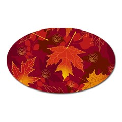 Autumn Leaves Fall Maple Oval Magnet