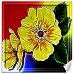 Beautiful Fractal Flower In 3d Glass Frame Canvas 20  X 20   by Simbadda