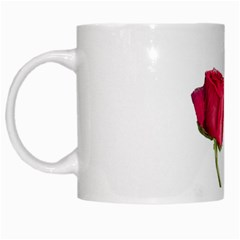 Red Roses Photo White Mugs by dflcprints