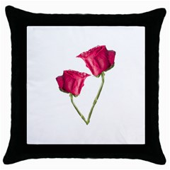 Red Roses Photo Throw Pillow Case (black) by dflcprints