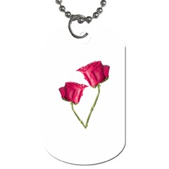 Red Roses Photo Dog Tag (one Side) by dflcprints