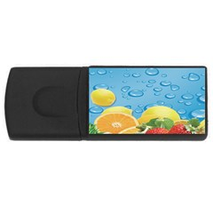 Fruit Water Bubble Lime Blue Usb Flash Drive Rectangular (4 Gb) by Alisyart