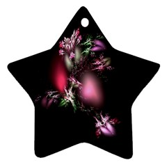 Colour Of Nature Fractal A Nice Fractal Coloured Garden Star Ornament (two Sides)