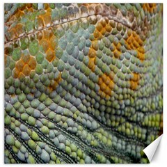 Macro Of Chameleon Skin Texture Background Canvas 20  X 20   by Simbadda