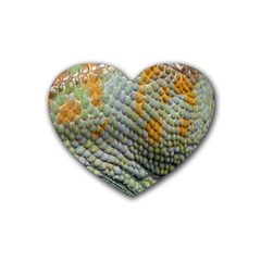 Macro Of Chameleon Skin Texture Background Rubber Coaster (heart)  by Simbadda