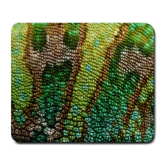 Colorful Chameleon Skin Texture Large Mousepads