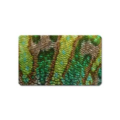Colorful Chameleon Skin Texture Magnet (name Card) by Simbadda