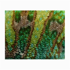 Colorful Chameleon Skin Texture Small Glasses Cloth (2 Side) by Simbadda