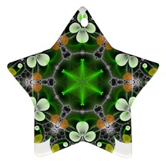 Green Flower In Kaleidoscope Ornament (star) by Simbadda