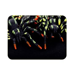 Colorful Spiders For Your Dark Halloween Projects Double Sided Flano Blanket (mini)
