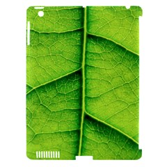 Avocado Leaf Apple Ipad 3/4 Hardshell Case (compatible With Smart Cover) by DeneWestUK
