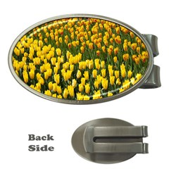 Colorful Tulips In Keukenhof Gardens Wallpaper Money Clips (oval)  by Simbadda
