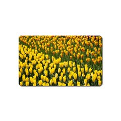 Colorful Tulips In Keukenhof Gardens Wallpaper Magnet (name Card) by Simbadda