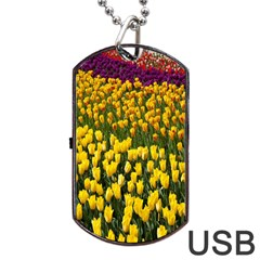 Colorful Tulips In Keukenhof Gardens Wallpaper Dog Tag Usb Flash (one Side) by Simbadda