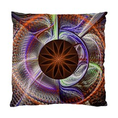 Background Image With Hidden Fractal Flower Standard Cushion Case (two Sides) by Simbadda