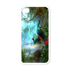 Beautiful Peacock Colorful Apple Iphone 4 Case (white)