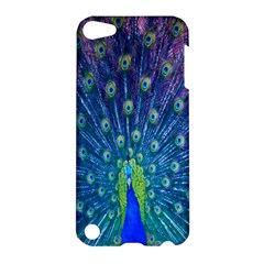 Amazing Peacock Apple Ipod Touch 5 Hardshell Case by Simbadda