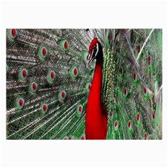 Red Peacock Large Glasses Cloth (2 Side)