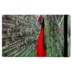 Red Peacock Apple Ipad 3/4 Flip Case by Simbadda