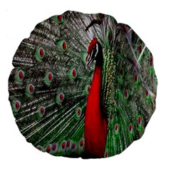 Red Peacock Large 18  Premium Round Cushions by Simbadda