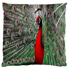 Red Peacock Large Flano Cushion Case (two Sides) by Simbadda