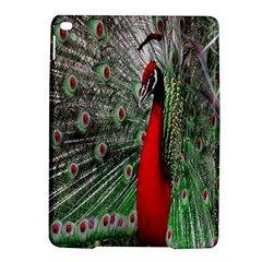 Red Peacock Ipad Air 2 Hardshell Cases by Simbadda