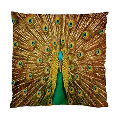 Peacock Bird Feathers Standard Cushion Case (one Side) by Simbadda