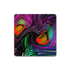Peacock Feather Rainbow Square Magnet by Simbadda