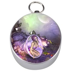 Wonderful Fairy In The Wonderland , Colorful Landscape Silver Compasses by FantasyWorld7