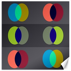 Circles Line Color Rainbow Green Orange Red Blue Canvas 20  X 20   by Mariart