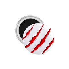 Scratches Claw Red White 1 75  Magnets by Mariart