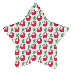 Fruit Pink Green Mangosteen Star Ornament (two Sides) by Mariart