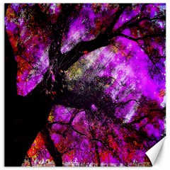 Pink Abstract Tree Canvas 12  X 12   by Nexatart