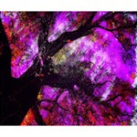 Pink Abstract Tree Deluxe Canvas 14  x 11  14  x 11  x 1.5  Stretched Canvas
