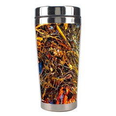 Abstract In Orange Sealife Background Abstract Of Ocean Beach Seaweed And Sand With A White Feather Stainless Steel Travel Tumblers by Nexatart