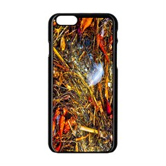 Abstract In Orange Sealife Background Abstract Of Ocean Beach Seaweed And Sand With A White Feather Apple Iphone 6/6s Black Enamel Case by Nexatart