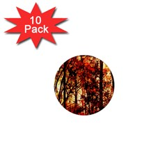 Forest Trees Abstract 1  Mini Magnet (10 Pack)  by Nexatart